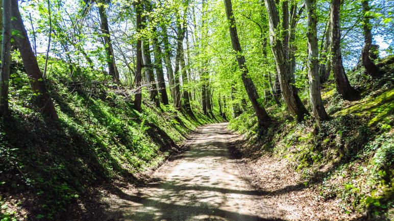 Auf dem Weg von Rimsting in das Westenbachtal