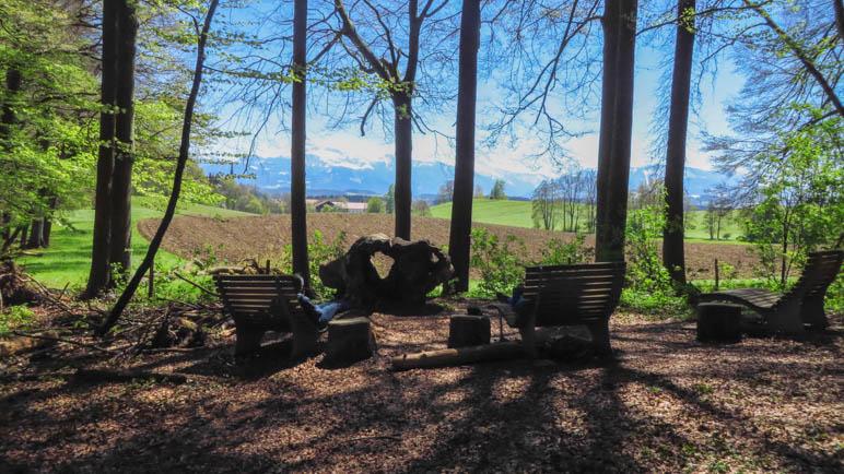 Der Platz der Ruhe: Bergblick aus dem Wald heraus