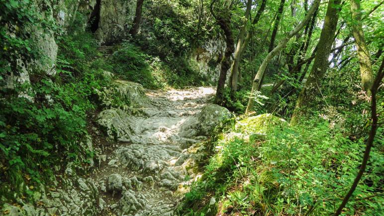 Über diesen ungewöhnlichen Felsweg gehen wir auf das Gipfelplateau zu