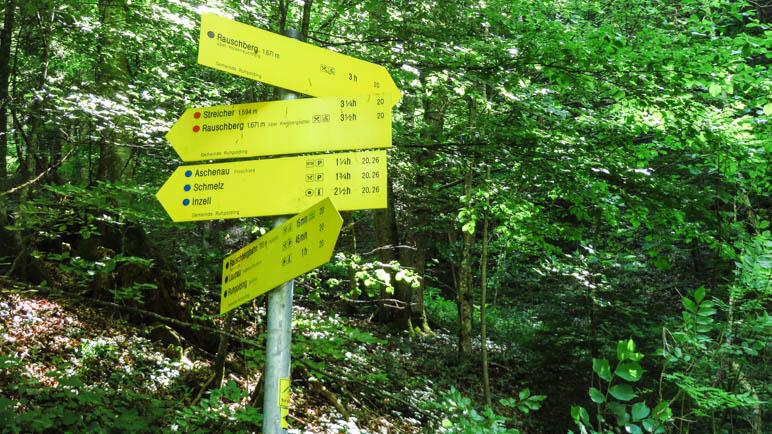 Hier zweigt der Hutzeneuaer Steig ab. Jetzt wird der Weg ein schwarzer Bergsteig