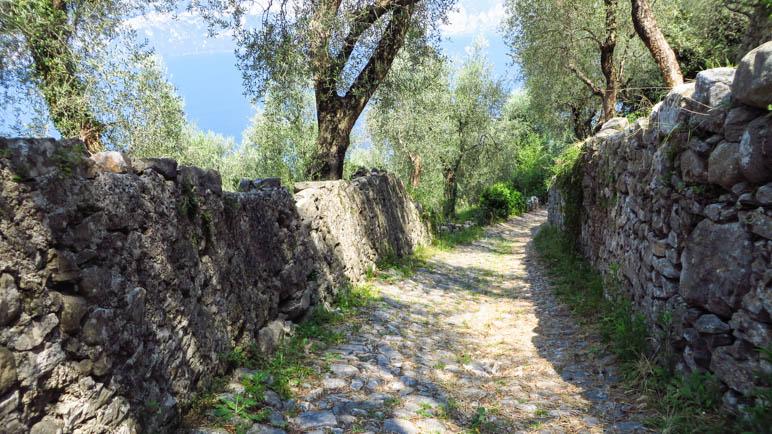 Der Karrenweg hinunter nach Marniga