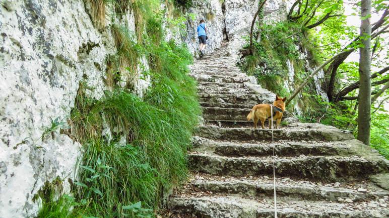 Weitere Treppen hnauf