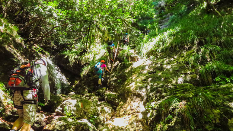 Auf den letzten Leitern vor dem Ausstieg aus dem Klettersteig