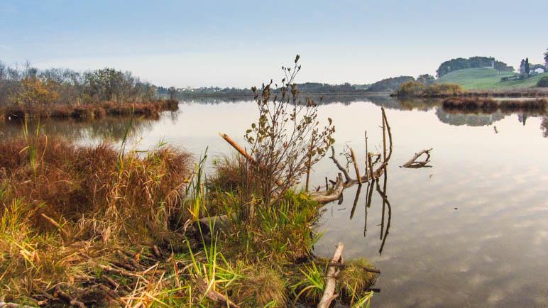 Am Egglburger See zwischen Ebersberg und Kirchseeon