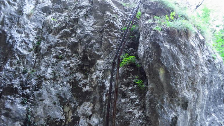 Die erste und längste Leiter des Klettersteigs