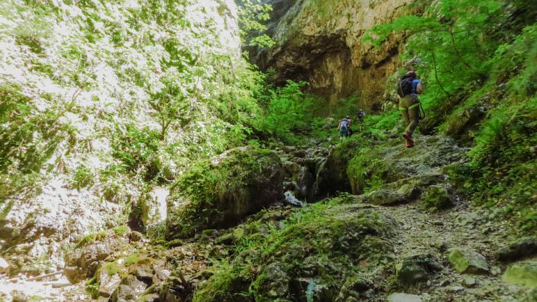 Nach dem Ausstieg aus der Felsschlucht wird der Weg fast dschungelartig grün