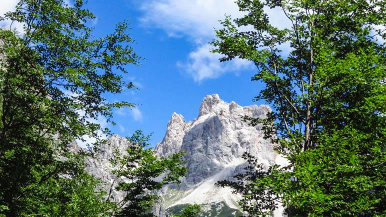 Zwischen den Bäumen zeigen sich die Felsberge der Brenta-Dolomiten