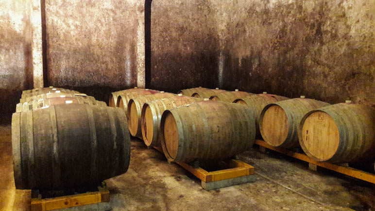 Auch das gehört zum Outdoor-Urlaub im Trentino: Der Besuch eines Weinkellers mit Verkostung