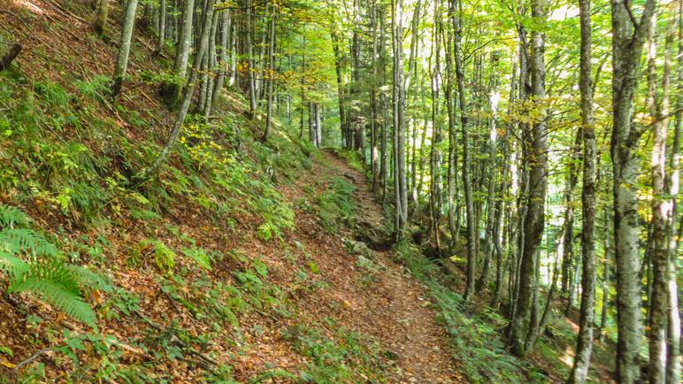 Ein schmaler Pfad führt am steil abfallenden Hang entlang
