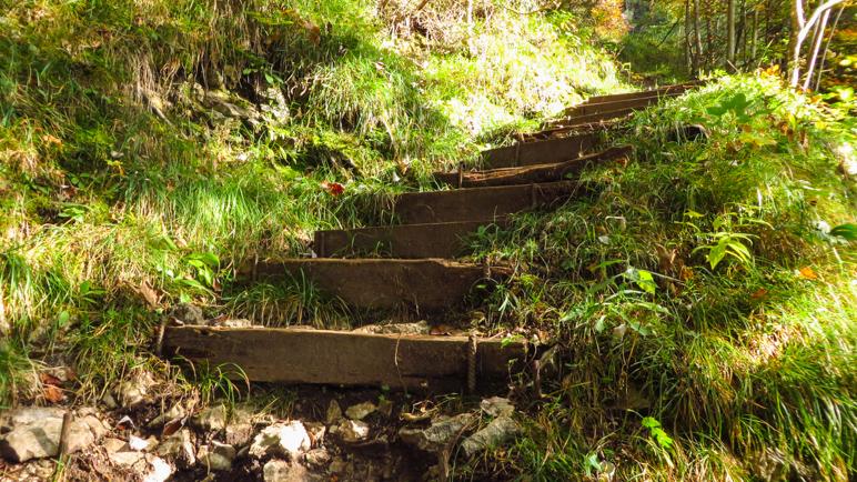 Einige Treppenstufen führen auf dem Weg bergauf