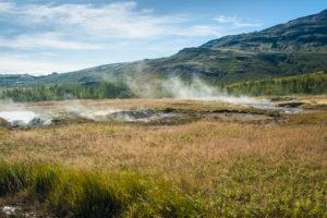 Dampfschwaden über den Feldern und Wiesen