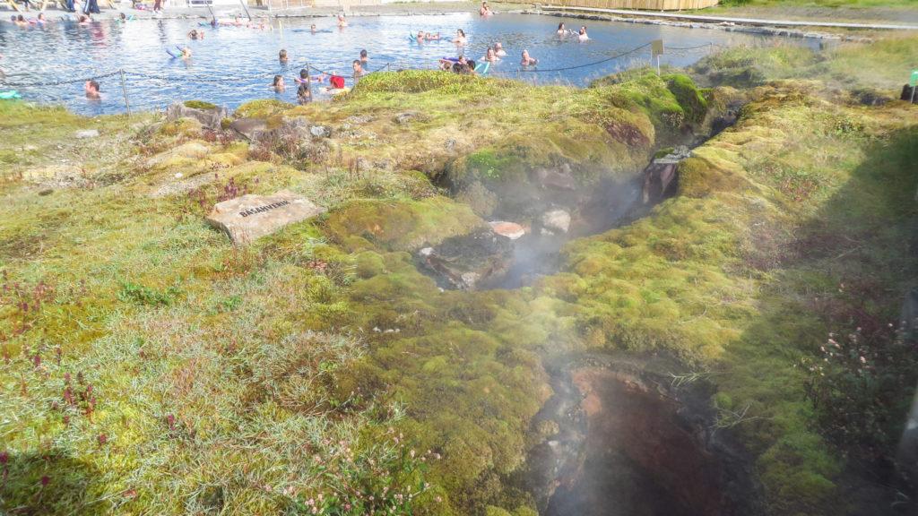 Zwischen den heißen Quellen, die das Wasser des Schwimmbades wärmen