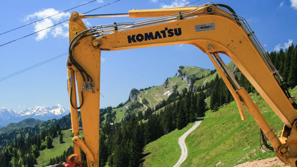 Schau nur, eine Gelbbauchraupe. Die soll jetzt wieder überall in den Alpen heimisch werden (hier am Brauneck)