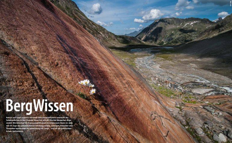Bergwissen - Foto: Heinz Zak
