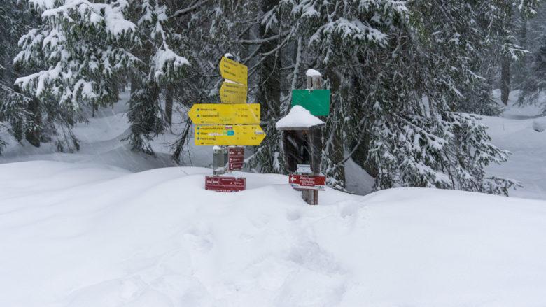 An den Wegweisern sieht man, wie hoch der Weg mit Schnee bedeckt ist