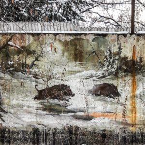 Wildsauen auf einer Mauer in Herdweg
