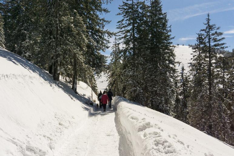 Auf dem Winterwanderweg zur Schlegelmulde