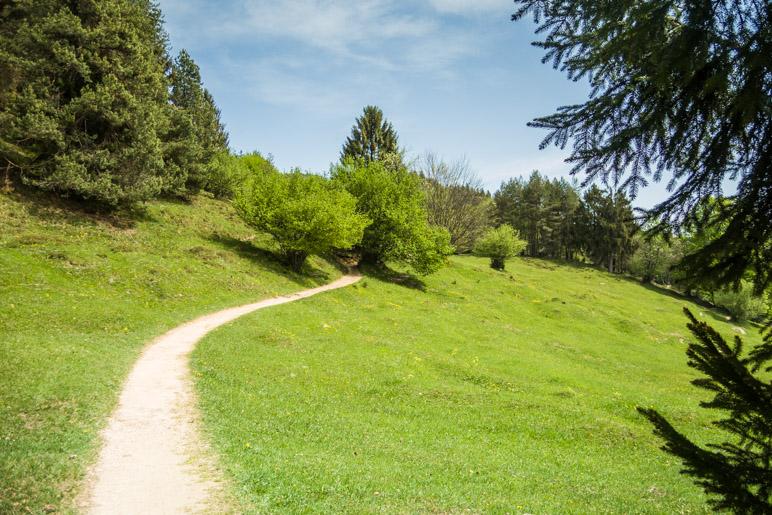 Über die Wiesen in Richtung Kneifellehen