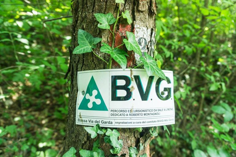 BVG - Weil wir dich lieben!