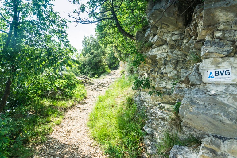 Der Weg entlang der Steilwand. Sieht aus wie ein Waldweg, verläuft aber fast direkt entlang der Abbruchkante