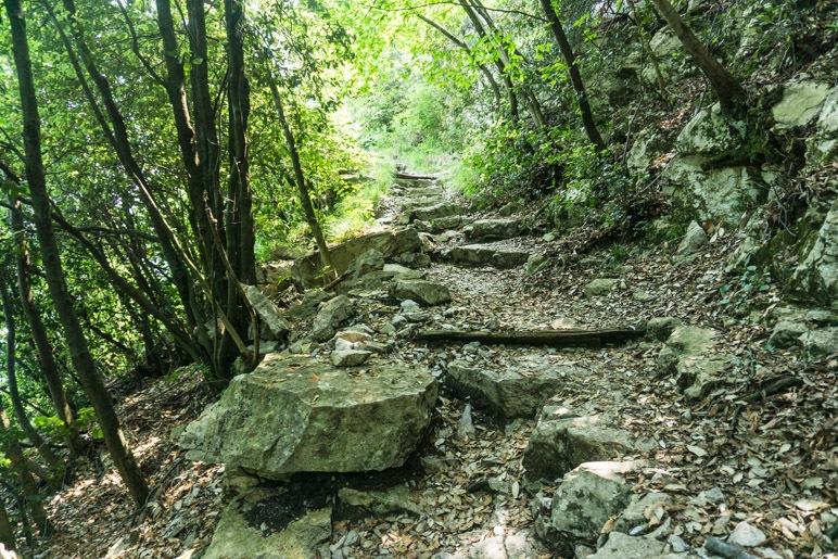 Auf dem steinigen Weg durch den Wald
