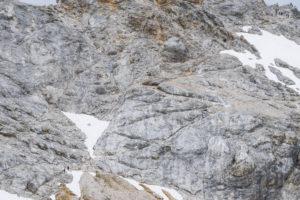 Der felsige Aufstiegsweg vom Zugspitzplatt zum Gipfel. Zum Größenvergleich: Unten links sind zwei Wanderer zu sehen