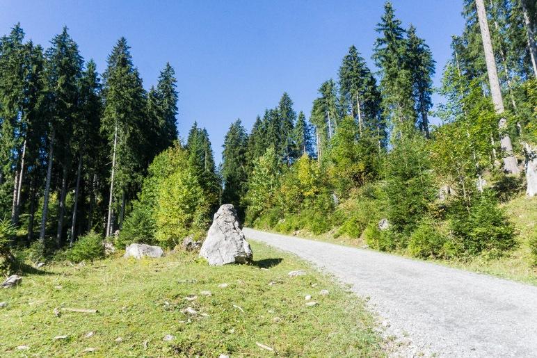 EIn breiter Fahrweg führt hinauf zur Kuhalm