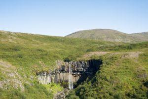Der Svartifoss und seine grüne Umgebung mit einer runden Bergkuppe im Hintergrund
