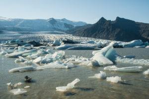 Eine Ansammlung von Eisschollen und kleinen Eisbergen