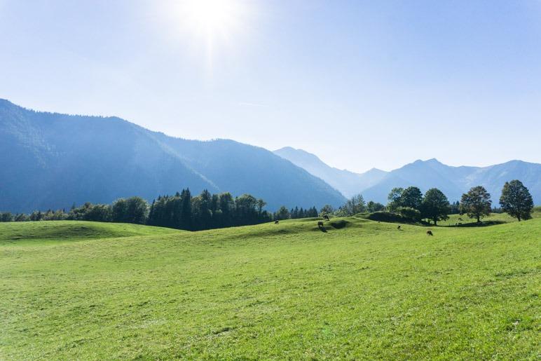 Ein Blick hinüber zu den Schlierseer Bergen