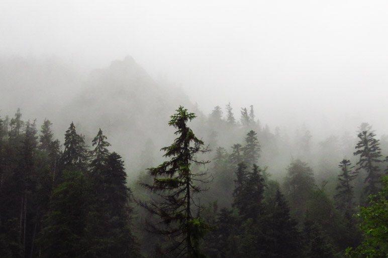 Kann man das noch Bergblick nennen?