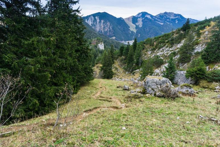Nach dem steilen Stück führt der Weg unschwierig über Wiesen und durch den Wald