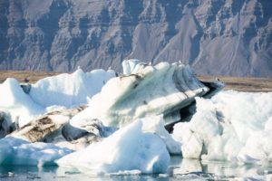 Möven haben es sich auf den Eisbergen bquem gemacht. Kalte Füsse haben sie nicht