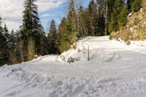 Aufstieg zur Karspitze auf dem breiten Fahrweg