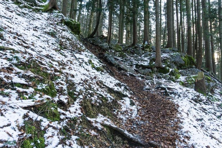 Steiler Aufstieg über Fels und Wurzeln im unteren Teil