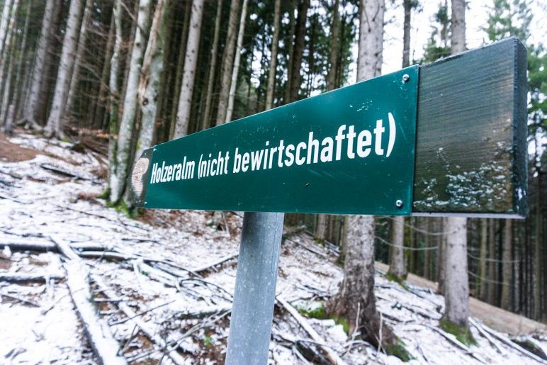 Weiter durch den Wald geht es zur Holzeralm