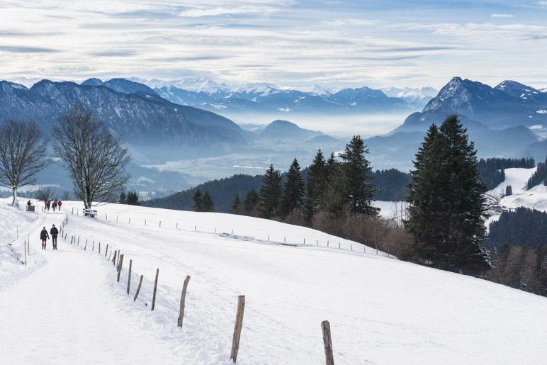 Toller Alpenblick von der Wildbichl-Alm