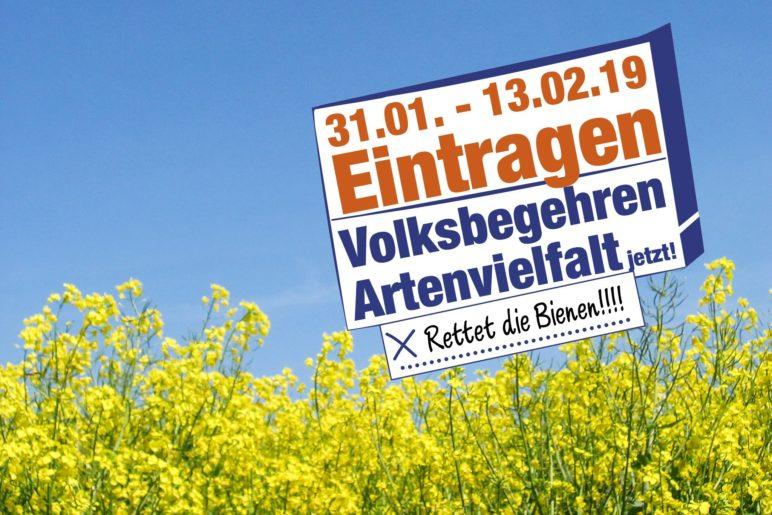 Vom 31.1. - 13.2. kann man sich in seinem Rathaus eintragen