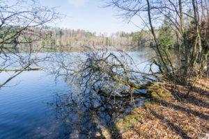 Am Tüttensee-Ufer