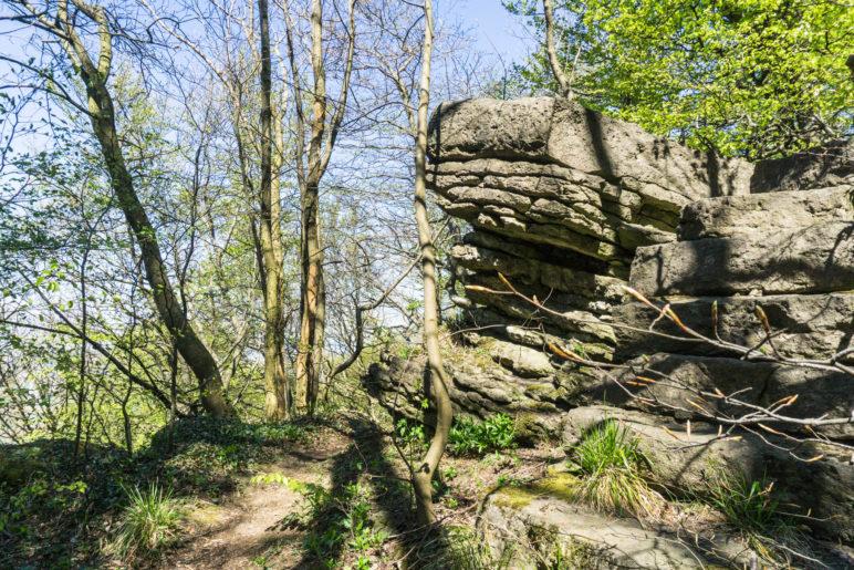 Einer der Felsen, die am Rand des Ithkamms stehen. Auf die meisten kann man leicht steigen