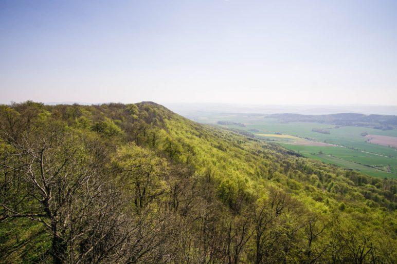 Der südliche Ith, vom Ith-Turm aus gesehen