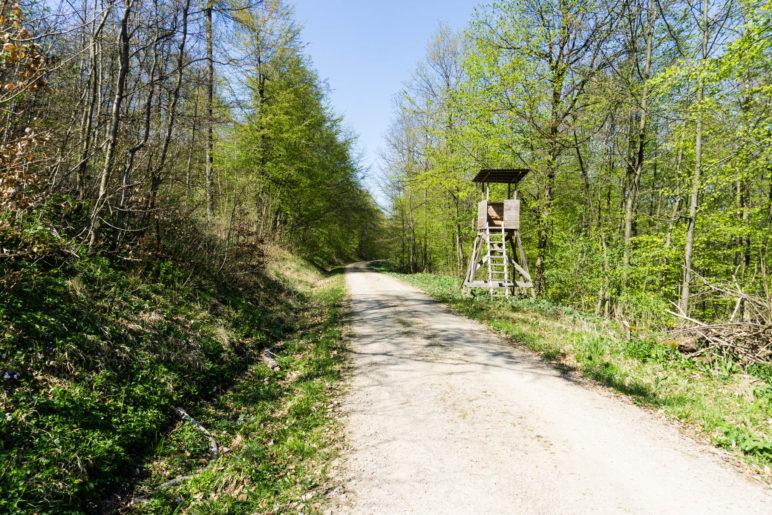 Auf dem Jörgensweg