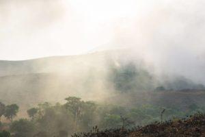 Immer wieder ziehen die Wolkenfetzen aus dem bewaldeten Tal hoch