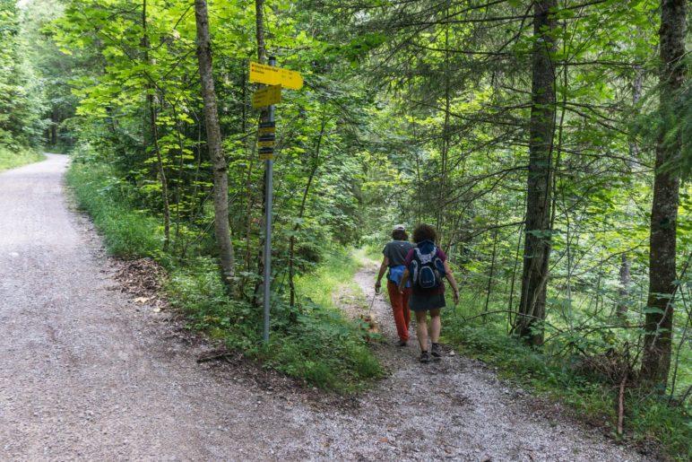 Hier trennen sich die Wege von Wanderern und Bikern