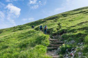 Aufstieg zum Streichkopfgatterl über einen Wiesenweg