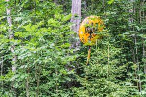 Das Grenzschild steht mitten im Wald und ist schon recht zugewachsen - eine echte grüne Grenze