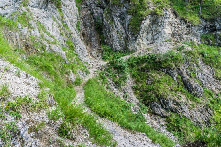 Diese Stelle wird teils als Schlüsselstelle der Wanderung bezeichnet, ist aber gar nicht so wiild