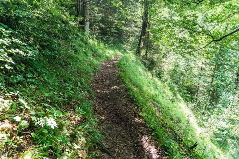 Ein schmaler Bergsteig, hoch oberhalb der Grundache