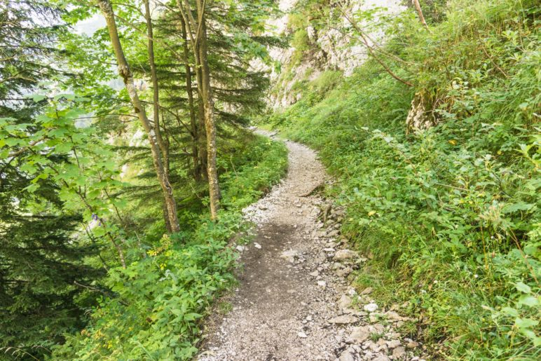 Leichter Beginn oberhalb der Höllentalangerhütte