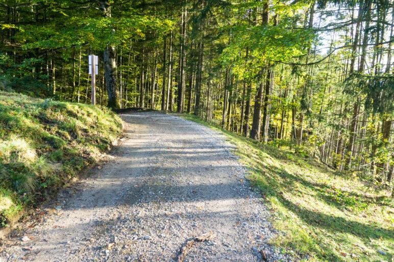 Nach der Moosenhütte führt ein breiter Fahrweg zurück zum Parkplatz